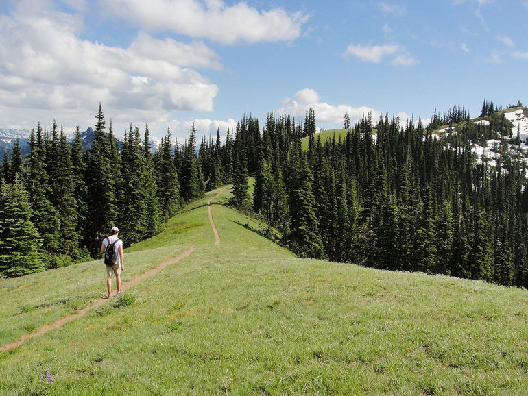 David-on-Olympic-National-Park-Mount-Angeles-Trail