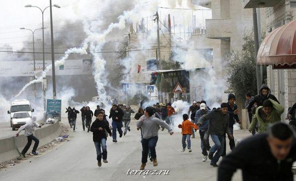 Слезоточивый газ выпущен в толпу демонстрантов израильскими пограничниками на КПП Каладия у Рамаллы. (16 января 2009 года) REUTERS/Fadi Arouri