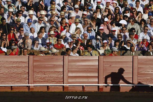 Тень испанского тореадора Даниэля Лука во время боя быков на арене Маэстранза в Севилье 29 апреля 2009. REUTERS/Marcelo del Pozo