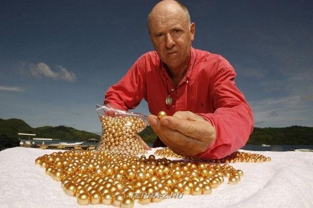 """Jacques Branellec, директор """"Jewelmer"""", и новый """"урожай"""" жемчуга"""