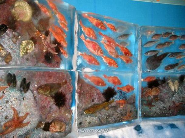 """Ледяной аквариум """"Kori no Suizokukan"""" в Кесеннума (Япония)"""