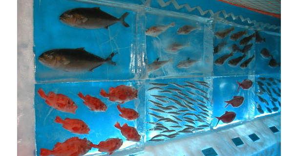 Ледяной аквариум Kori no Suizokukan в Кесеннуме (Япония)