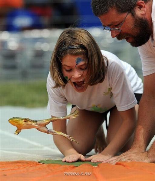 Фестиваль прыгающих лягушек