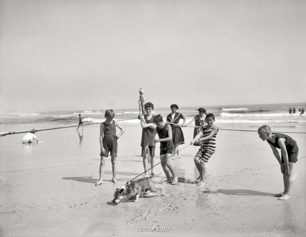 """Нью-Йорк, около 1905 года. """"Бульдог на пляже"""""""
