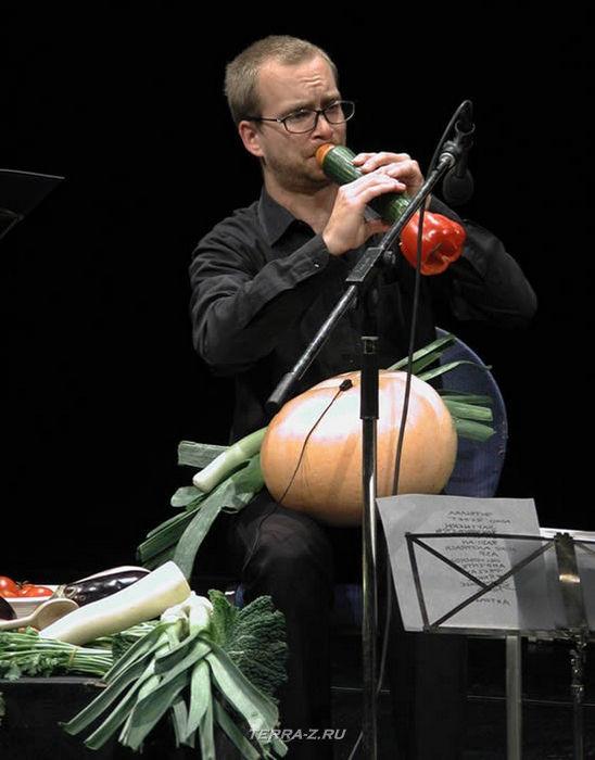 Венский овощной оркестр (Vienna Vegetable Orchestra)