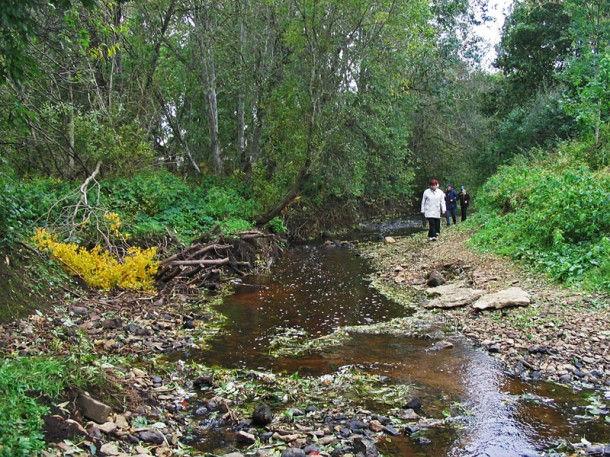 Исчезающая река