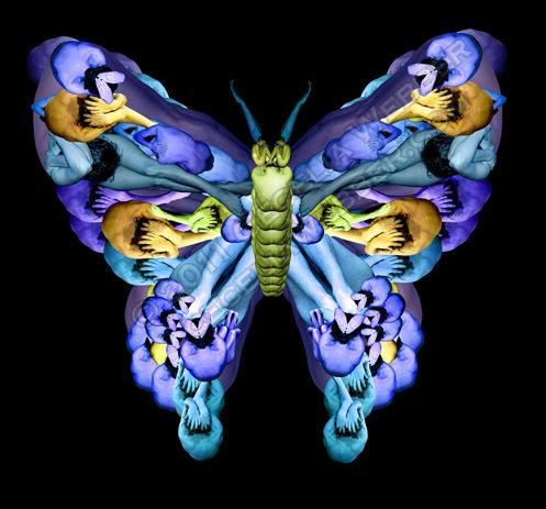 Бабочки из людей от Cecelia Webber (Сесилия Уэббер)