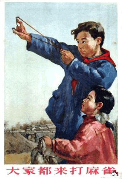 Великая воробьиная война (Китай, 1958-59г.)