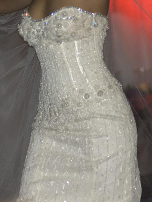 Diamond Wedding Gown – самое дорогое свадебное платье