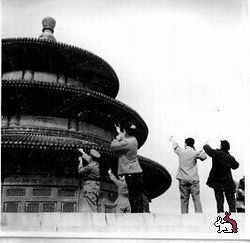 Великая воробьиная война (Китай, 1958 59г.)
