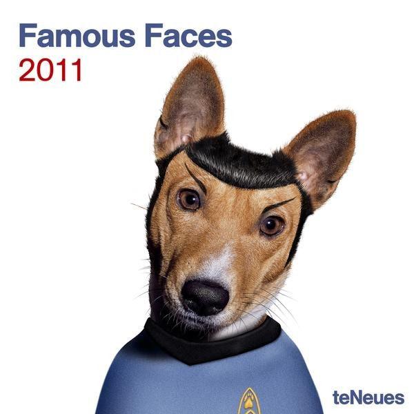 Домашние животные в костюмах знаменитостей