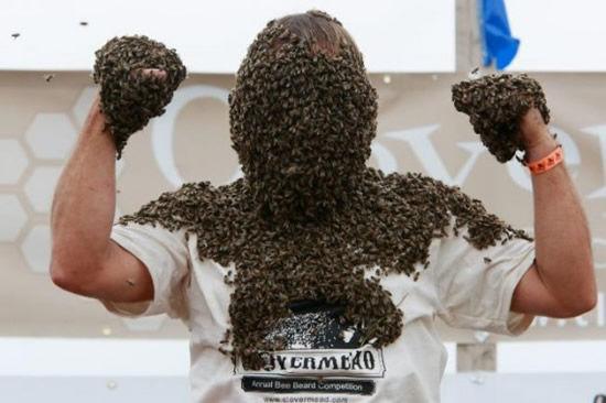 """Конкурс """"пчелиная борода"""" (Канада)"""