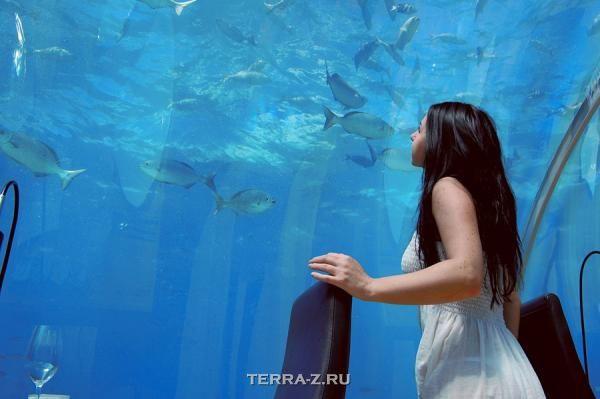 """Подводный ресторан """"Ithaa Undersea Restaurant"""" (Мальдивы)"""