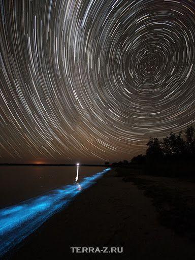Биолюминесценция в озерах Джипсленд (Австралия)