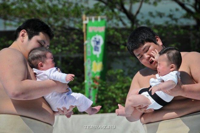 Nakizumo – фестиваль детского крика (Япония)