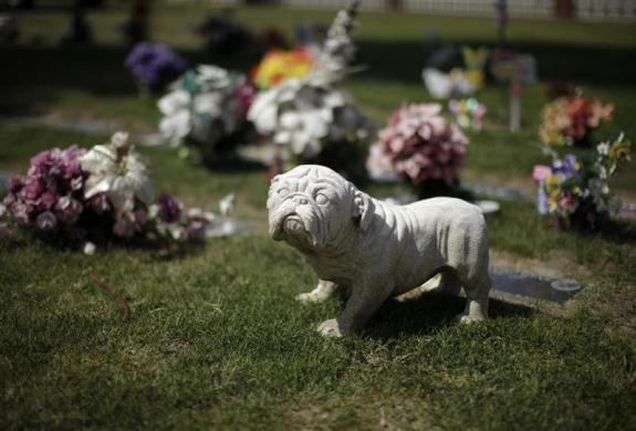 Кладбище для животных в Хантингтон-Бич, штат Калифорния, США