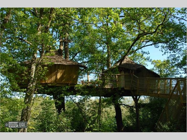 Отель Дом на дереве (Франция)