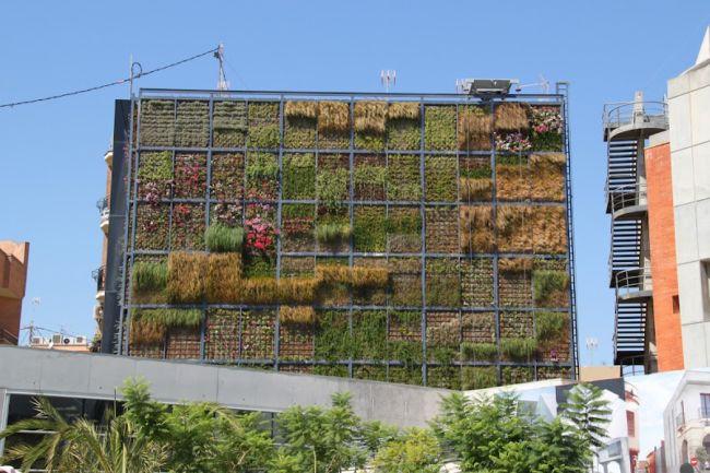 Вертикальный сад Сан Винсенте (Испания)