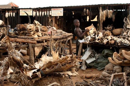 Рынок Фетиша Акодессэва – супермаркет первобытной медицины (Африка)