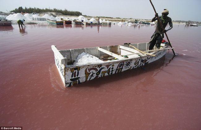 Розовое озеро Ретба (Африка)