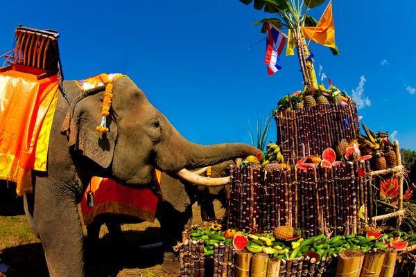 Национальный день тайского слона (Таиланд)