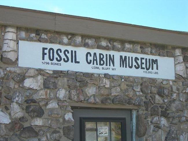 Дом из костей динозавра (США)