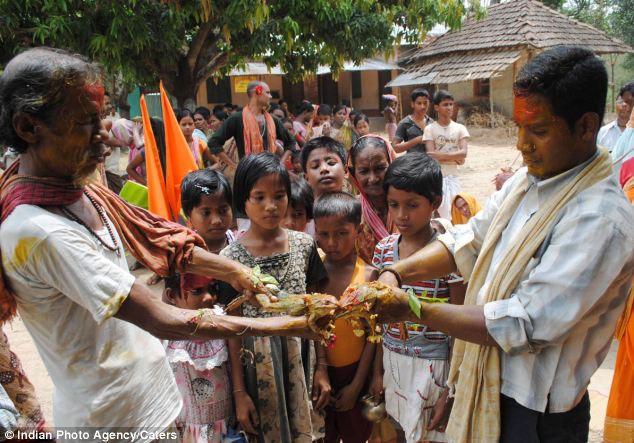Свадьба Лягушек (Индия)