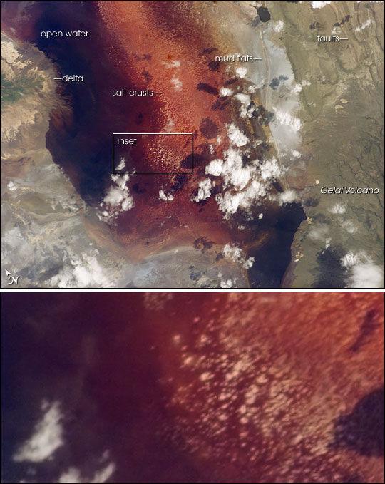 Красное озеро Натрон (Африка)