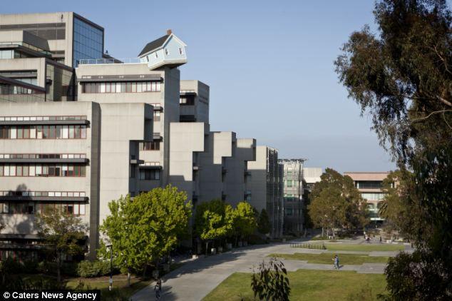 Падающая Звезда: коттедж на крыше многоэтажного дома (США)