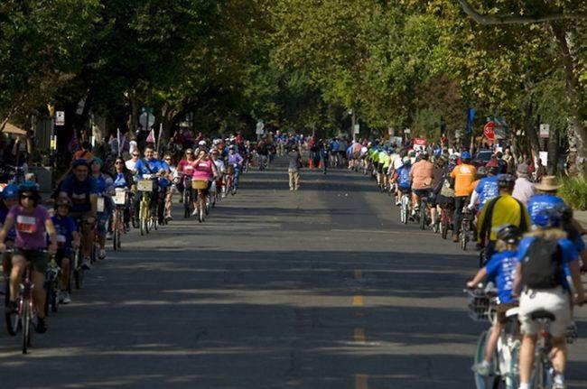 Самая длинная линия велосипедов (США)