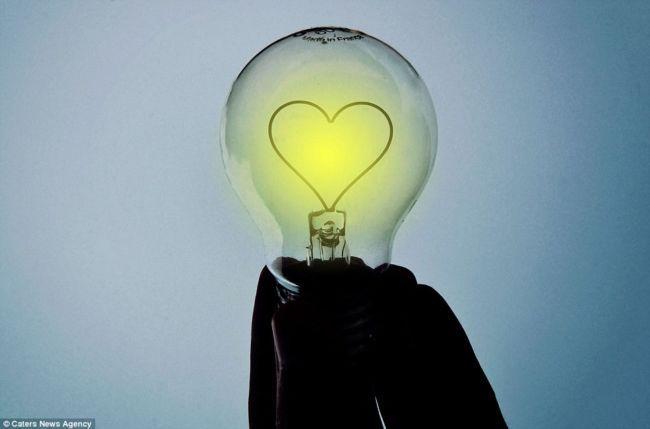 Жизнь в лампочках от Адриана Лимани (Adrian Limani)