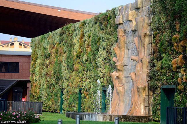 Самый большой вертикальный сад (Италия)