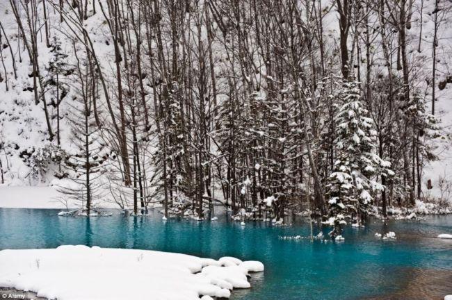 Голубая Лагуна: неожиданная достопримечательность (Япония)
