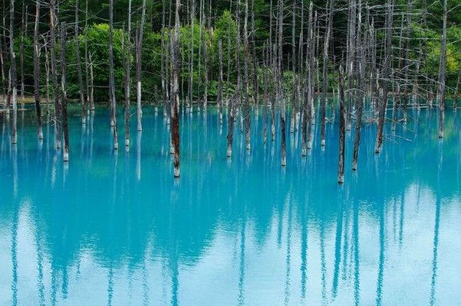 Голубой Пруд: неожиданная достопримечательность (Япония)