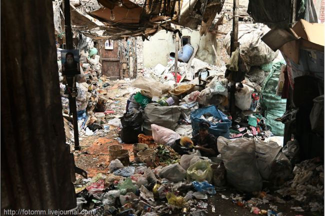 Маншият Насер: город мусорщиков в Каире (Египет)