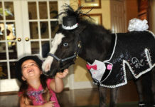 Gentle Carousel: пони-терапия (США)
