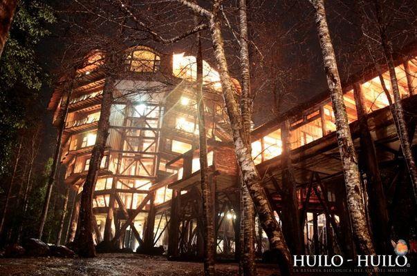 Отель Баобаб: жаркие тропики в холодных Андах (Чили)