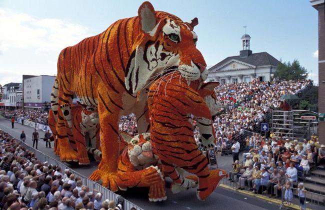 Bloemencorso: парад цветочных скульптур (Нидерланды)