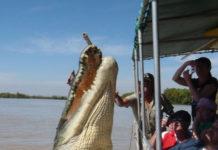 Сафари с крокодилами (Австралия)