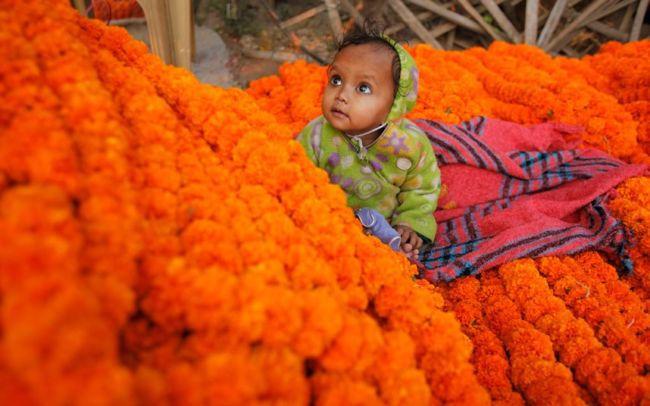 Дивали: фестиваль огней в Индии