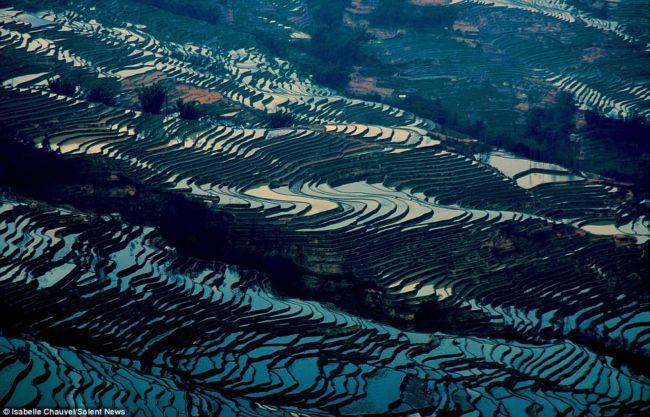 Рисовые террасы провинции Юньнань (Китай)