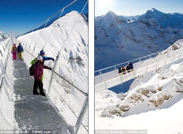 Walk Titlis Cliff: самый высокий подвесной пешеходный мост (Швейцария)