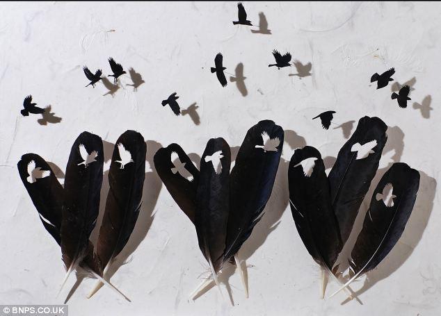 Крис Мэйнард: перья как искусство (США)