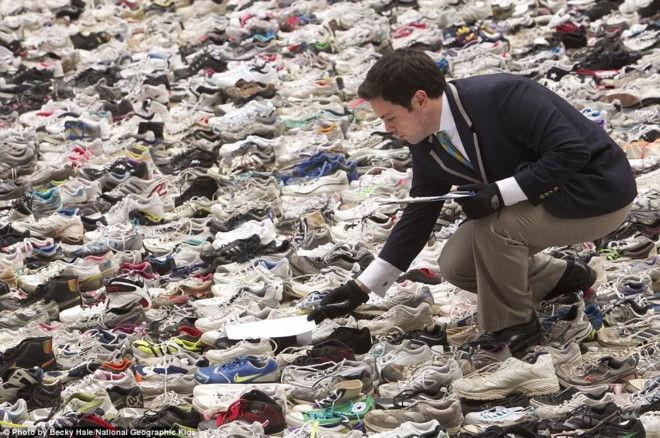Рекорд наибольшего количества обуви, собранного в одном месте (США)
