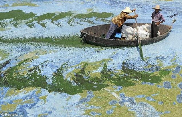 Зеленые реки: тотальное загрязнение грунтовых вод (Китай)