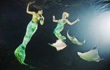 Weeki Wachee Springs: подводное шоу настоящих русалок (США)