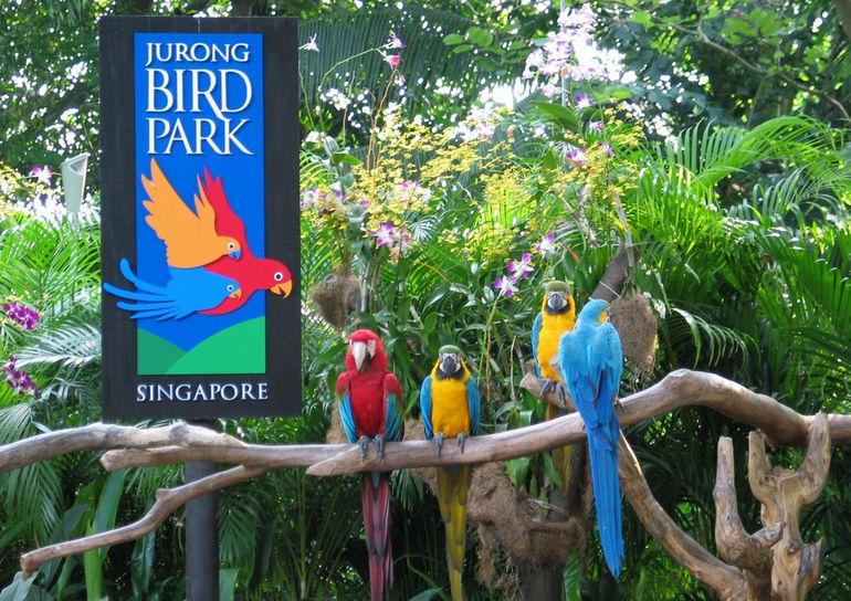 jurongbirdpark