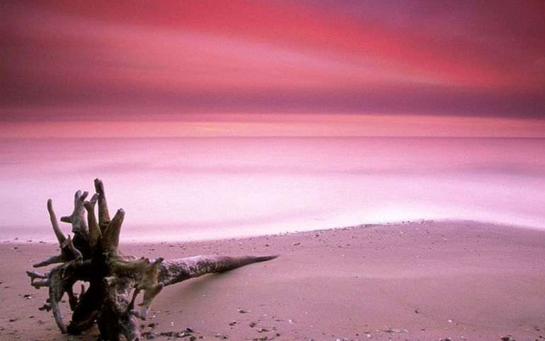 Pink-Sand-Harbour-island