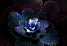 Фантастические цветы Татьяны Кондратовой