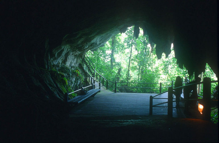 Парк Гунунг Мулу (Малайзия)